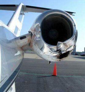 motor dañado por colisión con aves
