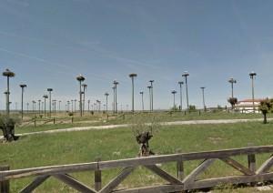 postes para nidos
