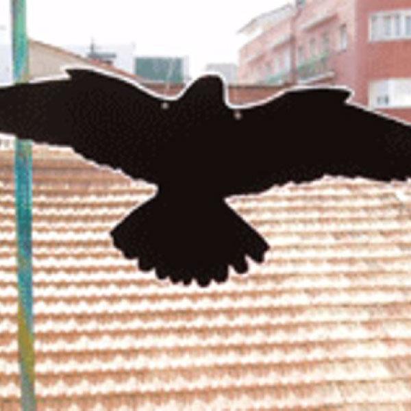 Halcón para ahuyentar aves